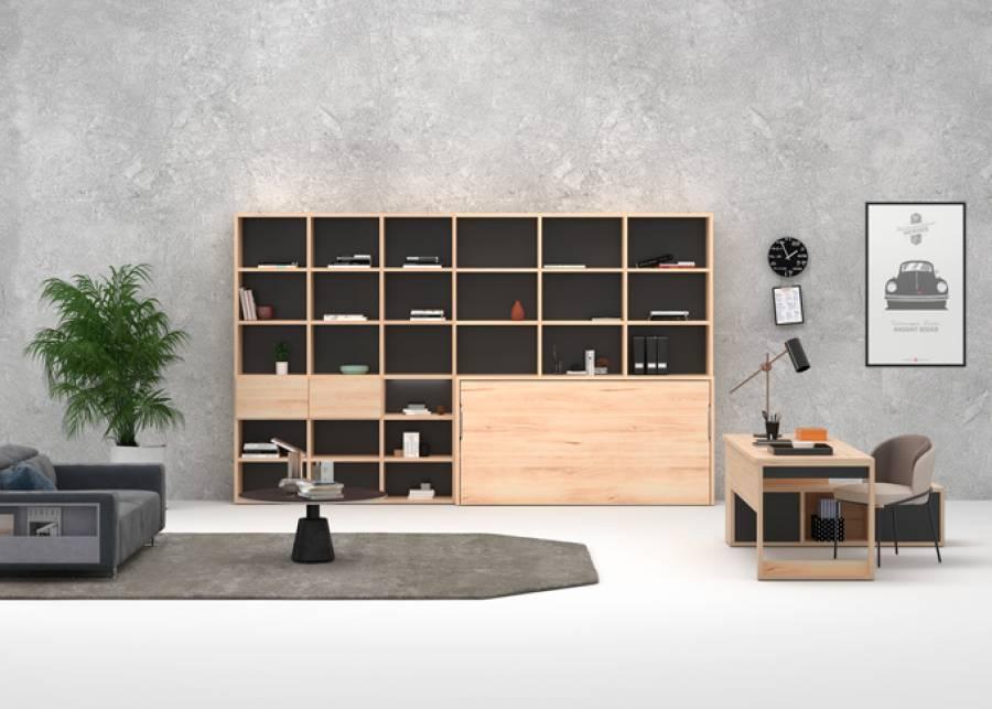 <p>Despacho con librer&iacute;a y cama abatible integrada</p>