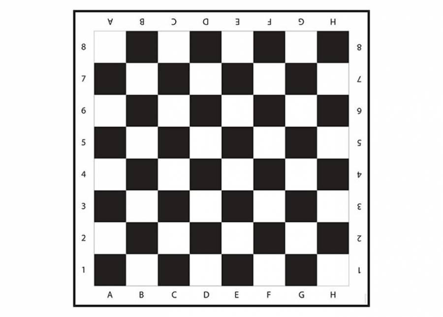 <h2>&iexcl;Te apetece una partida!</h2> <p>Con este gran tablero de <strong>ajedrez</strong> ya no tienes excusa para no aprender. Con la <strong>alfombra</strong> CHECKERS tienes una gran <strong>superficie lisa</strong>, y <strong>antideslizante</strong> con forma de tablero en blanco y negro donde practicar tu ajedrez o inventar<strong> juegos</strong> nuevos.&nbsp;</p>